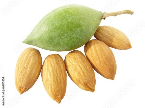 Image of raw green almond with alomnd nuts