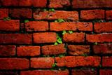 Fototapety Wall Brick pattern