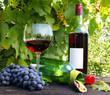 Im Weinlokal