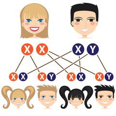 Gender dependency from chromosomes.