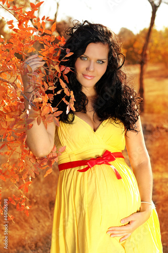 Young beautiful pregnant woman in autumn