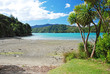 Queen Charlotte track, Marlborough sounds, New Zealand