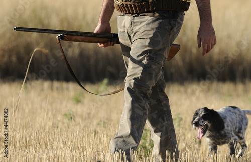 Papiers peints Chasse Hunting with english setter