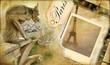 vintage almum - memories about Paris