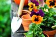 Gartentisch im Herbst