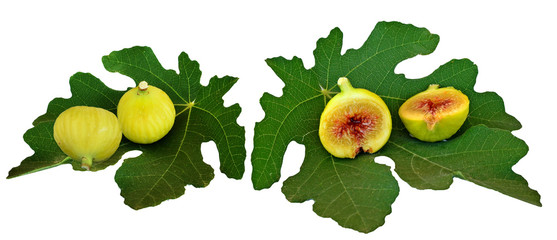 fig figs and leaf