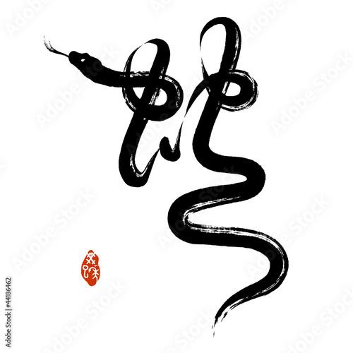 Chinese Penmanship Calligraphy: Snake