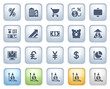 Finance web icons on buttons. Color series.