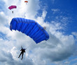 Skydivers in the sky - 44195637