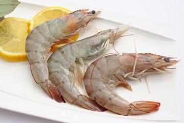 Gros plan sur les crevettes