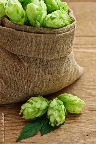 Hop in a burlap bag on wooden background