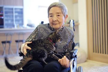 猫を抱っこしているお婆さん