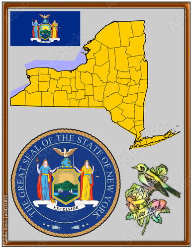 USA state New York flag map coat bird