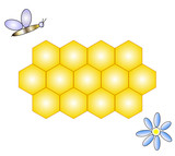 Vector illustration of honeycomb, bee & flower