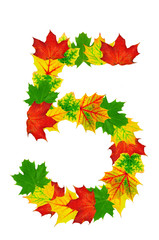Autumn maple Leaves in the shape of number 5