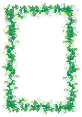 Floral frame with anemones