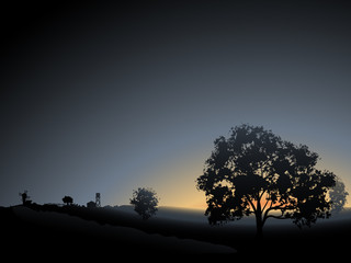 Vector lonely tree in the morning mist sunrise