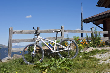 Mountain bike in Alto Adige
