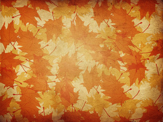 Maple leaves on paper background