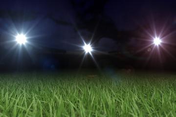Spielfläche Nachts im Stadion 3D