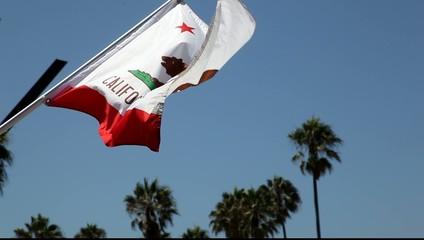 Caifornian flag waving