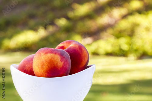 Backyard Peaches