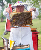 Beekeeper  working in apiary poster