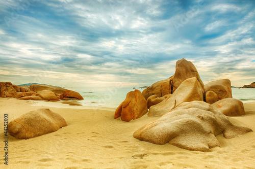 Beach - 44252003