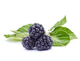 bramble fruit healthy food