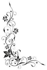 Ranke, flora, Blume, Blüte, border, frame, black