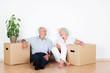 Leinwanddruck Bild - lachendes älteres paar beim umzug
