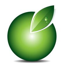Green icon/emblem/logo vector