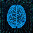 Cerebral hemispheres into digital space.