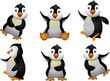 young penguin set character