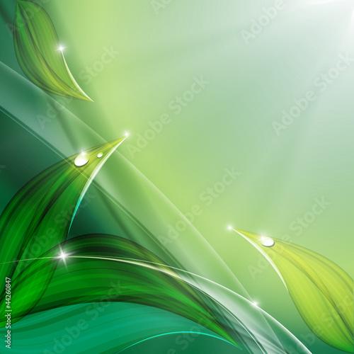floral vector background. Eps10