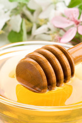 honey in glass jar and stick with blossom