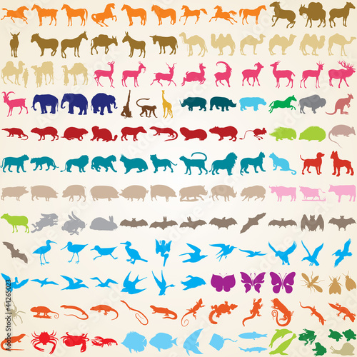 Animals silhouettes, vector set of 148 animal species