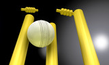 Cricket Ball Hitting Wickets At Night