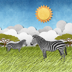Zebra recycled paper background