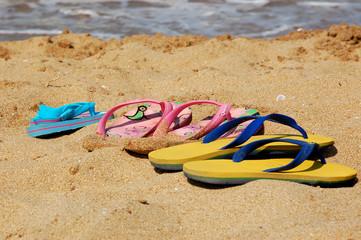 Flip-Flops Family