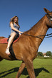Cute young girl ride a horse