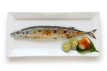 broiled saury with salt, japanese cuisine