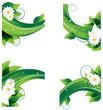 chamomiles and dense foliage