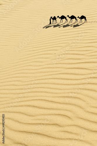 Fototapeten,karawane,sand,sonne,eins