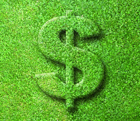 Green Grass Dollar