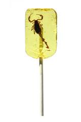 Sucette avec véritable scorpion