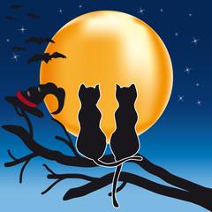 Katzenpaar mit Mond neu