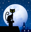 Black cat and moon