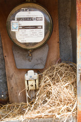 Nest of a sparrow in a cabinet with electrical meter