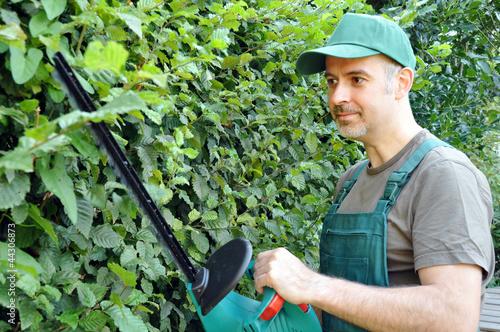Gärtner schneidet Hecke
